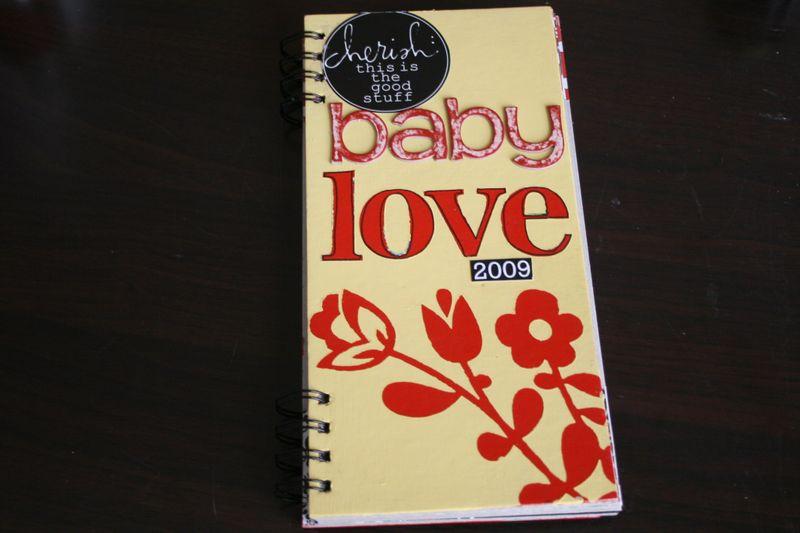 Pregnancy 2009 Mini Album