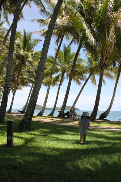 PalmCove20110105_0037